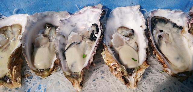 食わず嫌いはもうやめる!食べるたびに女性らしく…キレイに…これが本当の『牡蠣』の魅力!おいしく安全に食べる方法とは?